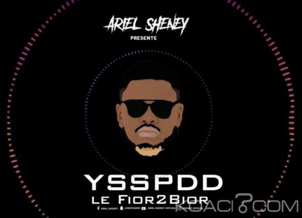 Ariel Sheney - YSSPDD - Coupé Décalé