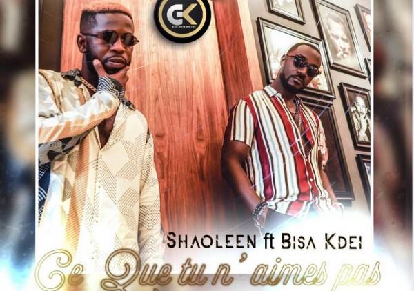 Shaoleen & Bisa Kdei : Ce que tu n'aimes pas (Remix) - Coupé Décalé
