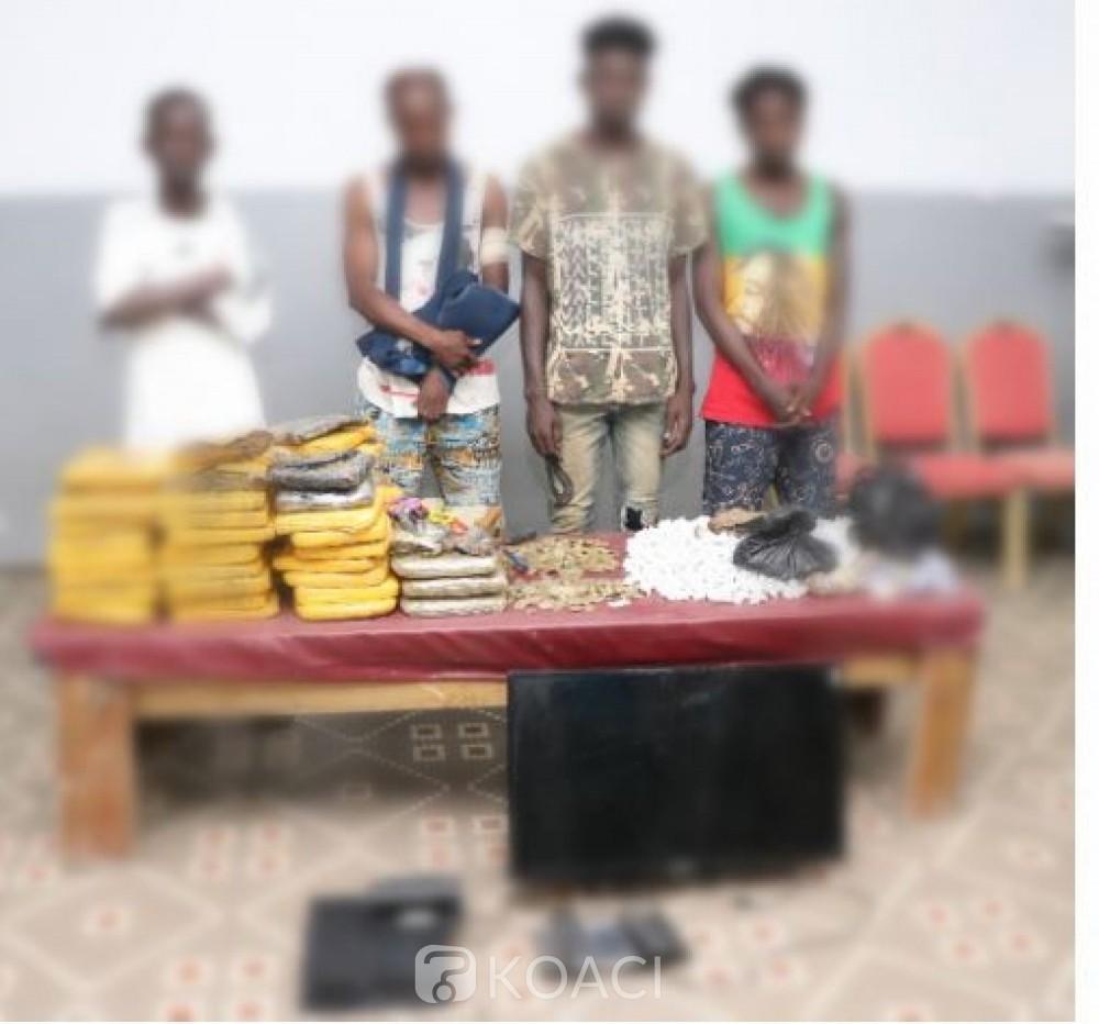 Côte d'Ivoire : Lutte contre la drogue, plusieurs pièces de monnaie saisies  sur des individus interpellés dans des fumoirs par la Gendarmerie - KOACI