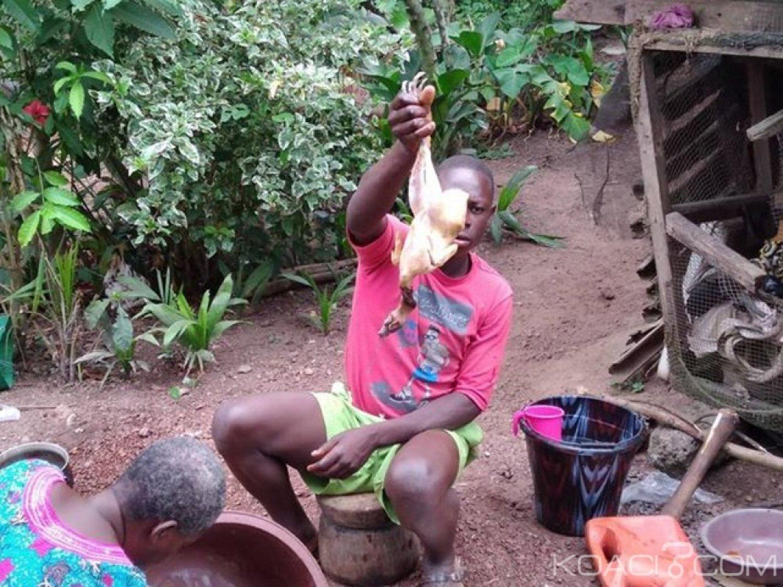 Côte d'Ivoire: Nouvel an à Abidjan, la fête du poulet?