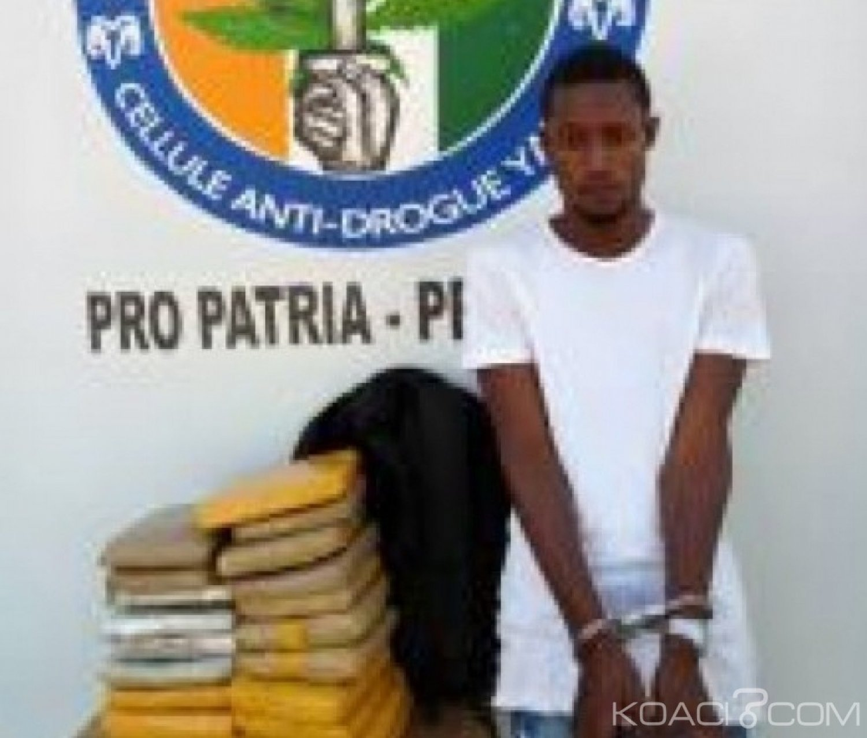 Côte d'Ivoire : Un individu interpellé  à Yamoussoukro avec en sa possession 20kg de cannabis  dissimulés dans un sac à dos
