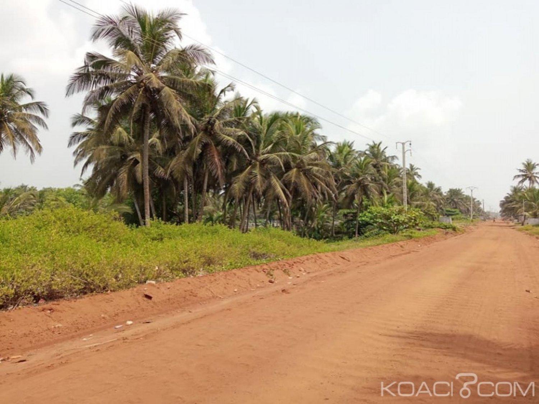 Côte d'Ivoire : Pour juguler le péril écologique, le Gouvernement adopte un projet de loi portant Code forestier