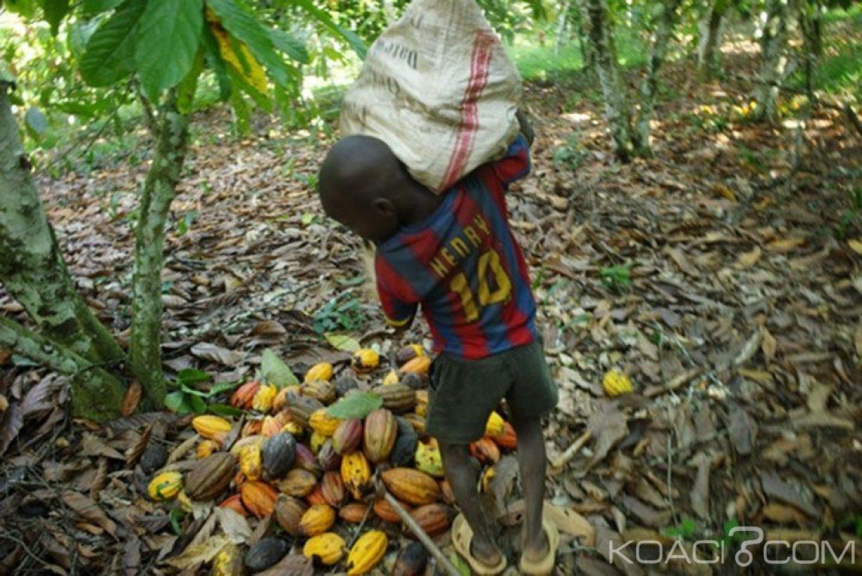Côte d'Ivoire : Travail des enfants dans les plantations de cacao, « si vous êtes pris,  vous serez arrêté  jugé et condamné », prévient le ministre de l'agriculture