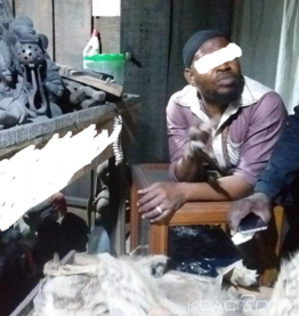 Côte d'Ivoire : Un trafiquant d'espèces protégées recherché mis aux arrêts et déféré au parquet