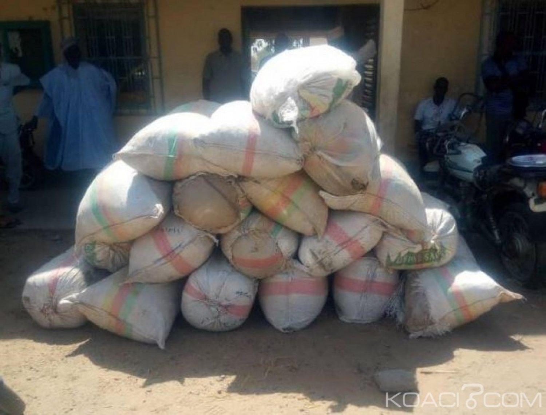 Cameroun : Des Camions de Dangote utilisés pour la circulation des stupéfiants
