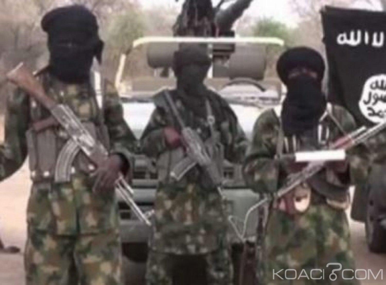 Niger :  Lac Tchad, 40 Boko Haram abattus par la force multinationale