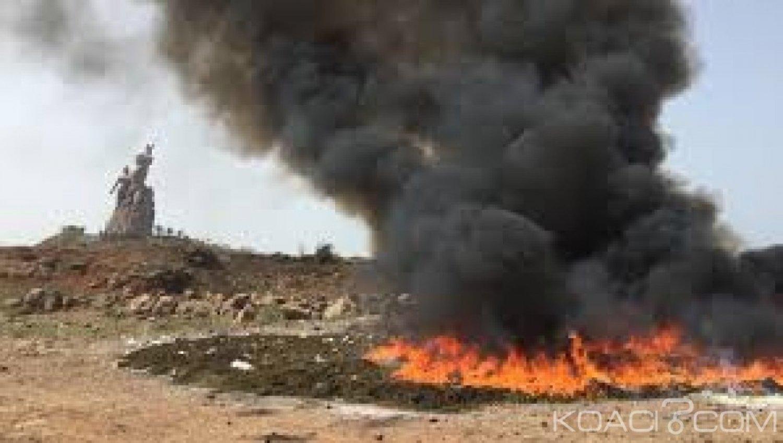 Guinée-Bissau : Près de  800 kg de cocaïne brûlées