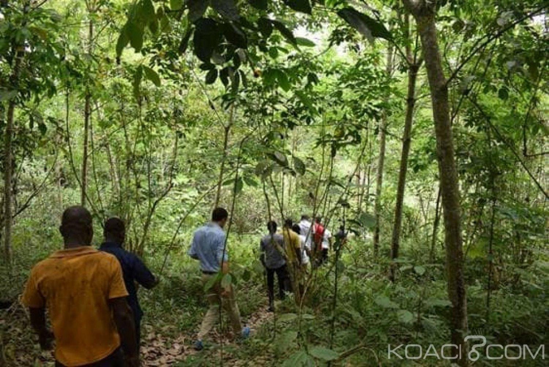 Côte d'Ivoire : Alépé, réduction des émissions de gaz à effet de serre, le C2D finance un projet dans la Mé à hauteur d'1,600 milliard de F CFA