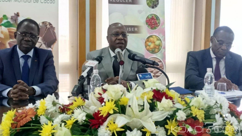 Côte d'Ivoire : Cacao, le kilogramme de la fève pour la campagne intermédiaire fixé à 750 FCFA comme la campagne principale