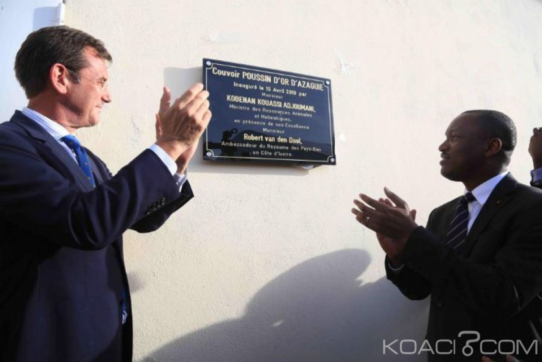 Côte d'Ivoire : Une usine du couvoir Poussins d'or inaugurée à Azaguié, 110 emplois en vue