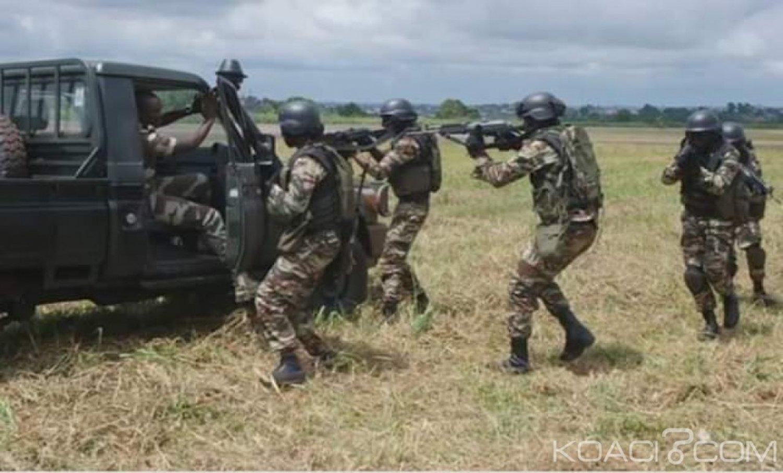 Cameroun :  Le désarmement des séparatistes anglophones et djihadistes de Boko Haram se poursuit
