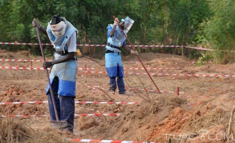 Sénégal : 16 démineurs déployés en Casamance enlevés par des présumés éléments du Mfdc