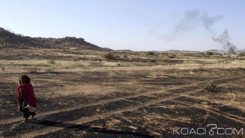 Tchad : Des affrontements entre éleveurs et agriculteurs font 31 morts  en 4 jours
