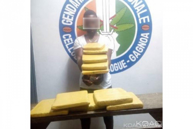 Côte d'Ivoire: Il voyageait avec 13 blocs de cannabis soit 11.7 kg dans un car