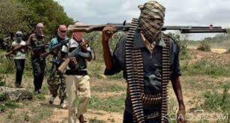 Cameroun: Revendication par l'EI des récentes attaques dans les pays du Lac Tchad