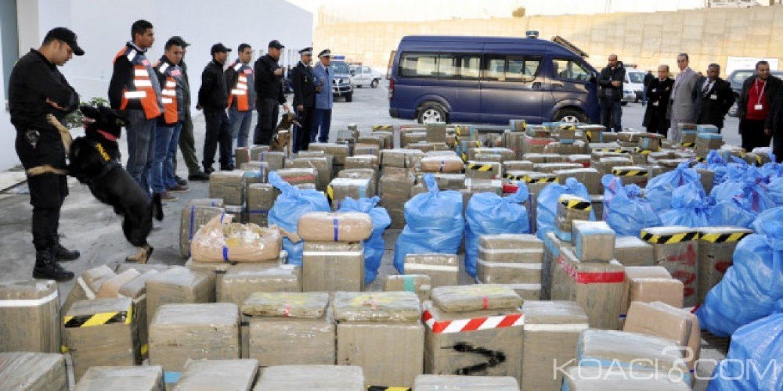 Maroc: Saisie record de plus de 12 tonnes de cannabis