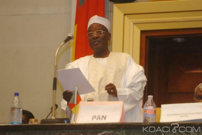 Cameroun : (Encore) un nouveau report des élections législatives et municipales