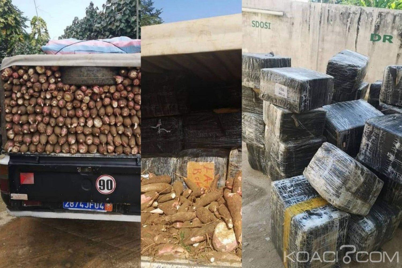 Côte d'Ivoire : 807 kg de produits prohibés saisis dans une cargaison de manioc à Aboisso