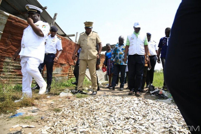 Côte d'Ivoire : Poissons empoisonnés déversés à Port-Bouët, 2 personnes interpellées, une enquête ouverte, le préfet d'Abidjan « pas de panique »