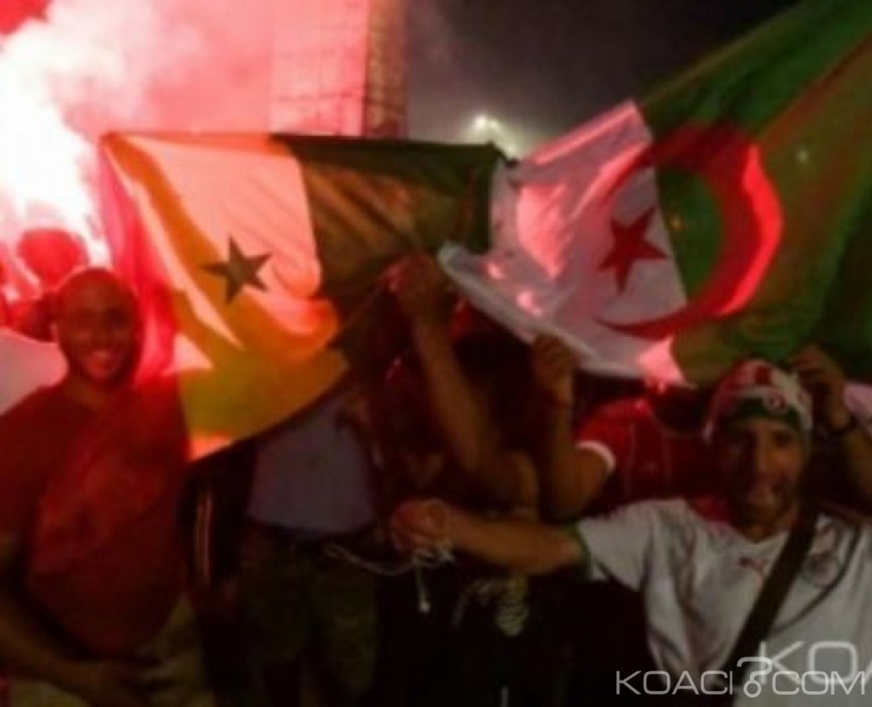 Algérie-France: «Sauvagerie», 282 supporters algériens interpellés après la victoire des Fennecs face au Nigeria