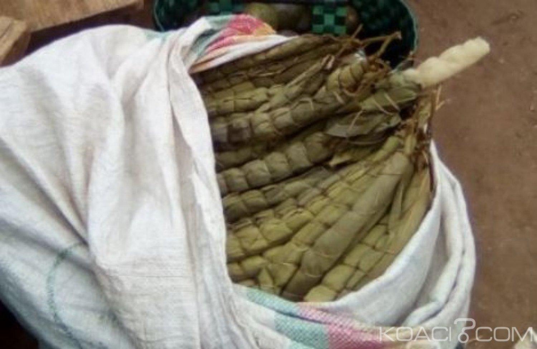 Cameroun: Le bà¢ton de manioc aliment de base diminue en grosseur, son prix flambe