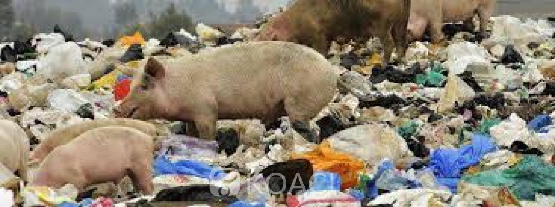 Malawi: La cour suprême valide l'interdiction des sachets plastiques