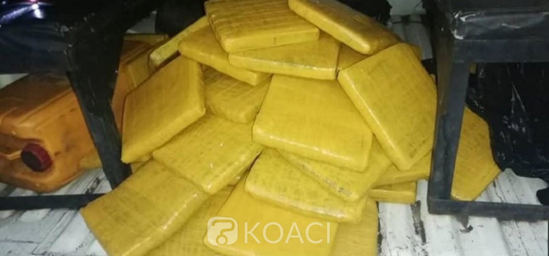 Côte d'Ivoire: A Abobo, camouflé dans les environs d'un parc à bétail, un trafiquant interpellé avec 45 blocs de cannabis