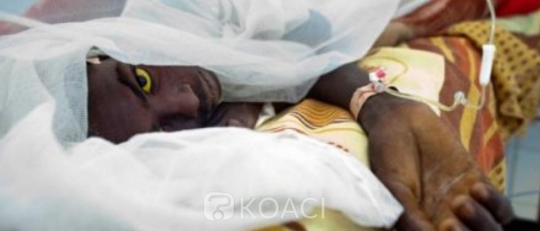 Côte d'Ivoire : Aucun cas d'épidémie de fièvre jaune n'a été décelé depuis le mois de juillet, rassure le ministère de la santé
