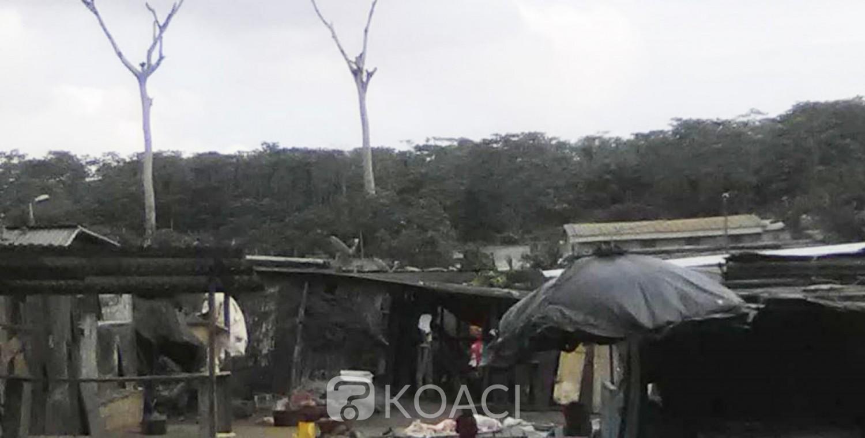 Côte d'Ivoire: Forêt du Banco, des corps enterrés nuitamment et de façon clandestine du côté d'Abobo