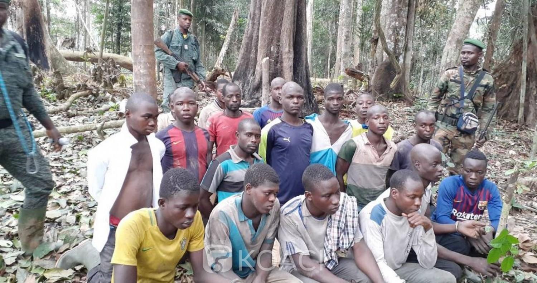Côte d'Ivoire :   Défrichements et infiltrations de la forêt classée de Yaya, 20 burkinabé appréhendés et des hectares de plantation de cacao détruits