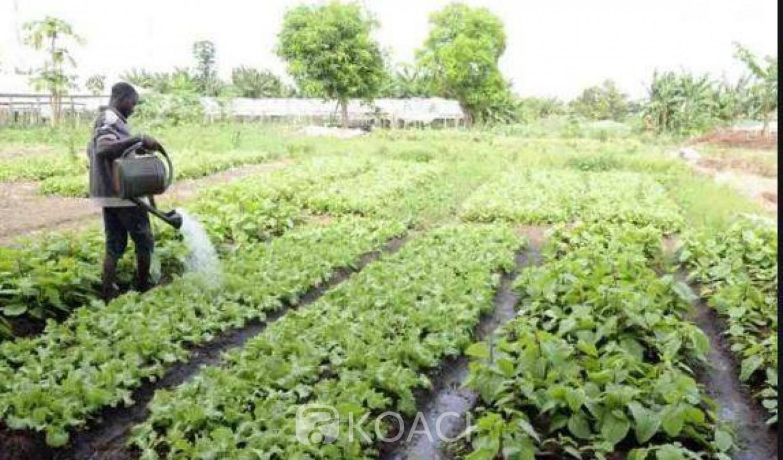 Côte d'Ivoire: Voici le programme de rentrée des Fonctionnaires-élèves de l'Institut National de Formation Professionnelle Agricole (INFPA)
