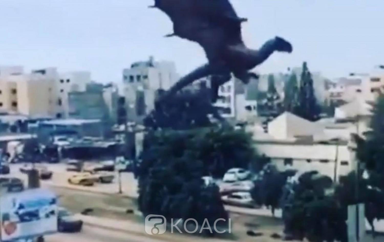 Sénégal : L'incroyable histoire du « Dragon » à Dakar qui tient en haleine tout le pays