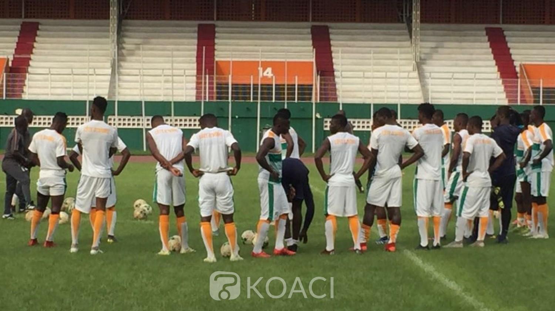 Côte d'Ivoire:  CHAN 2020, les éléphants locaux  tombent à Niamey 2-0