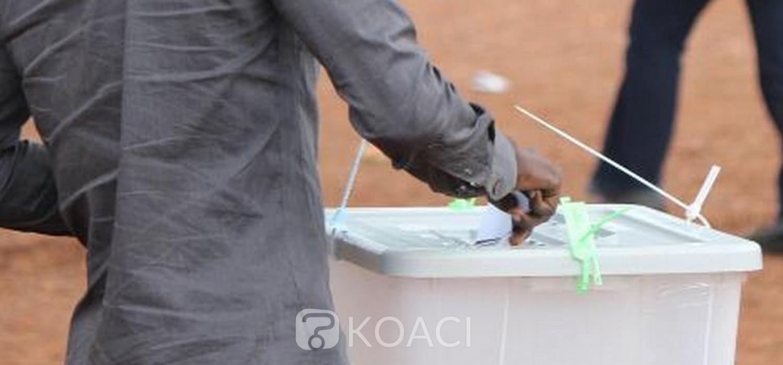 Togo: Le gouvernement opte pour le vote de la diaspora