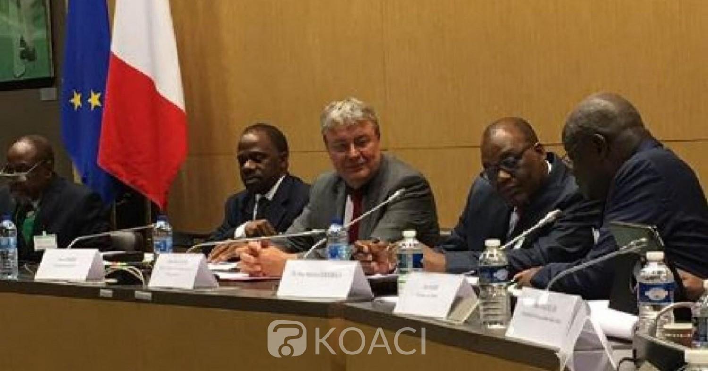 Côte d'Ivoire: Des députés français prennent part à un colloque du parti de Gbagbo à Paris