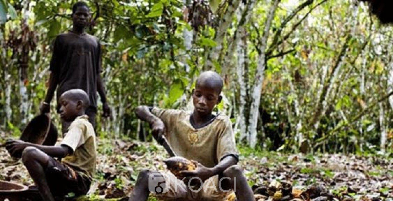 Côte d'Ivoire-Ghana: Accra et Abidjan déterminés à éradiquer le travail des enfants et la déforestation dans le cacao