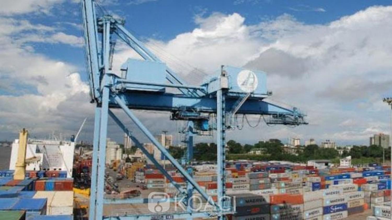 Cameroun:  En pleine bataille pour le Terminal à conteneurs du PAD, un rapport révèle le poids de Bolloré en Afrique