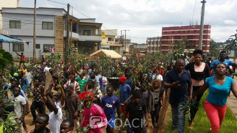 Cameroun: L'assassinat d'un travailleur humanitaire suscite les condamnations de l'Onu