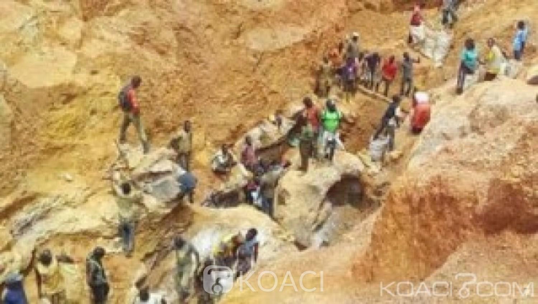 Cameroun: Redevances liées à l'exploitation des ressources naturelles, comment partager la rente ?