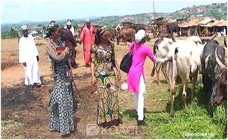 Cameroun: Crise anglophone, 189 femmes violées 272 décès,  les Mbororos paient toujours et encore le prix fort
