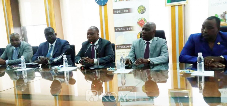Côte d'Ivoire: Café, le prix du kilo fixé à 700 FCFA comme la précédente campagne avec une subvention de l'État de 32 milliards de FCFA