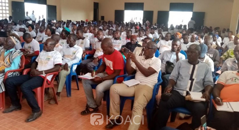 Côte d'Ivoire: 2020, en mal dans le Tonpki, le Rhdp lance un nouveau mouvement pour conquérir le monde rural