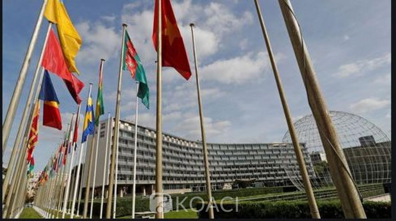 Côte d'Ivoire: UNESCO, le pays élu pour un mandat de quatre (4) ans dans trois organes