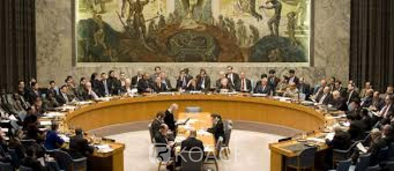 Cameroun   : Crise anglophone, le Conseil de sécurité désapprouve la partition du pays