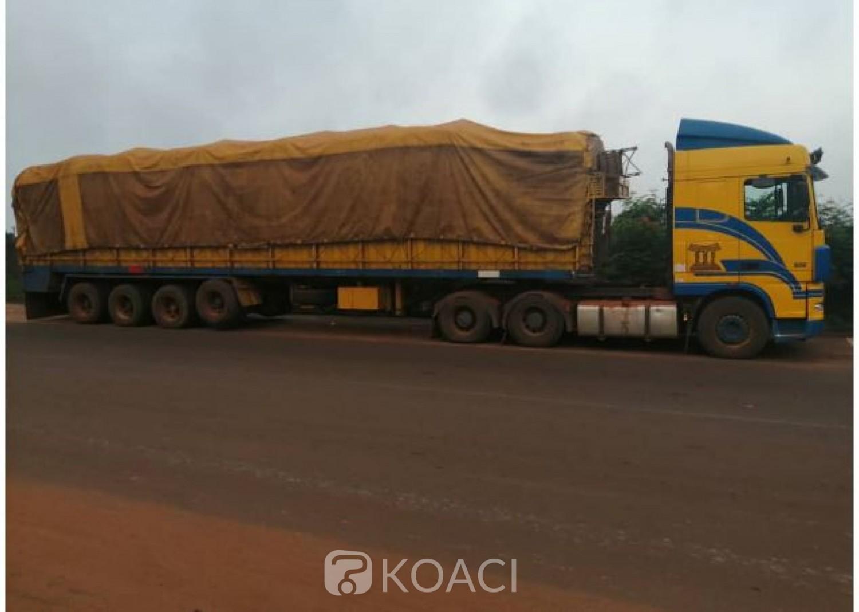 Côte d'Ivoire : Fuite des produits agricoles, 110 tonnes d'anacardes saisies