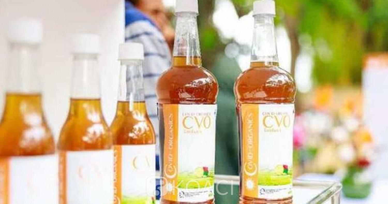 Cameroun : Coronavirus, le gouvernement envisage d'accompagner Mgr Kleda et de commander le Covid-organics malgache