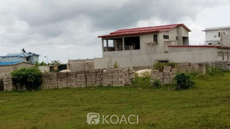 Côte d'Ivoire : CNRA, des hauts cadres de l'administration ivoirienne se partagent le patrimoine et construisent des maisons luxueuses, le Centre s'inquiète de l'atteinte de ses objectifs