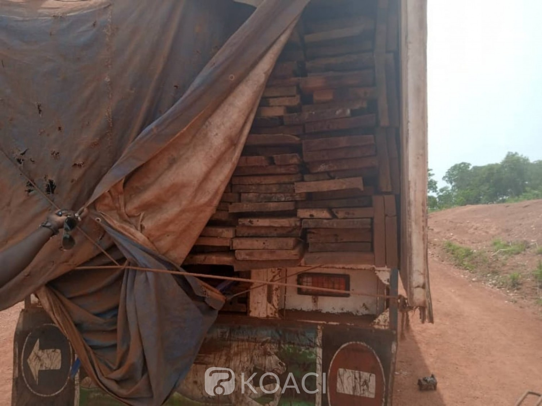 Côte d'Ivoire : Minignan, un trafic de bois à sciage entre la Côte d'Ivoire et le Mali découvert par des agents de la SODEFOR, le Directeur départemental des Eaux et forêts cité