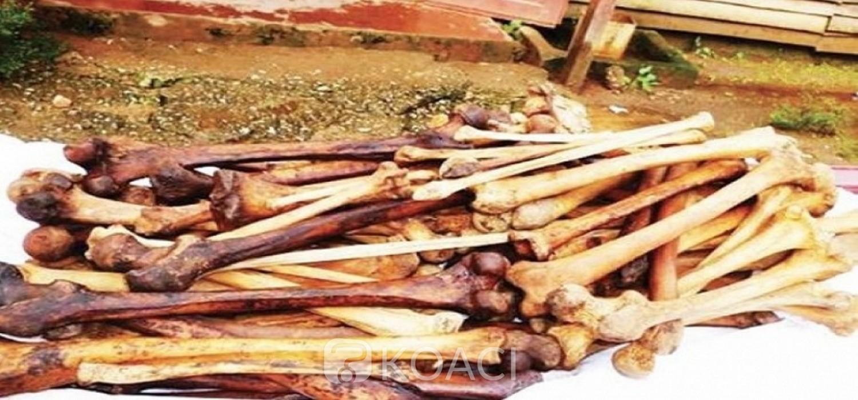 Cameroun : Deux nouvelles interpellations dans un vaste réseau de trafiquants présumés d'ossements humains