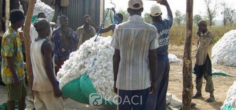Togo :  Coton, le NSCT cédé à OLAM, des raisons avec Abira Bonfoh